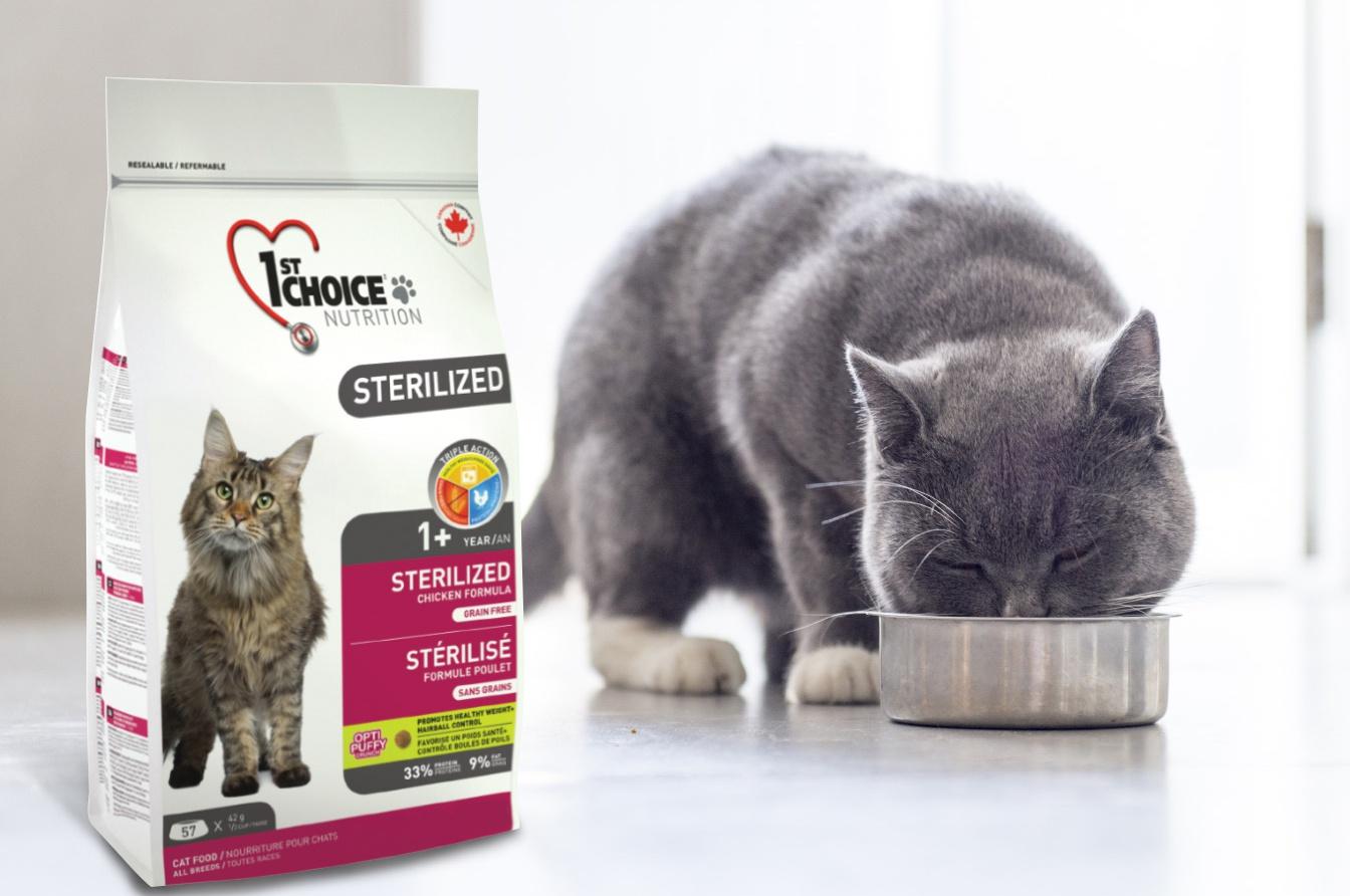 1st choice (cat food): composition, benefits, reviews